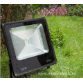 IP65 remote flood light